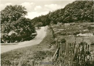 0134A-Bruennighausen52-Am-Wald-Scan-Vorderseite.jpg