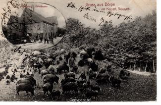 0005A-Doerpe134-Multibilder-Wildschweine-Bokelmann-1910-Scan-Vorderseite.jpg