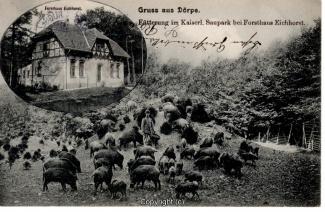 0072A-Doerpe133-Multibilder-Wildschweine-Eichhost-1907-Scan-Vorderseite.jpg