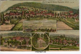 0065A-Osterwald262-Multibilder-Ort-Fichtenwirt-Litho1899-Scan-Vorderseite.jpg