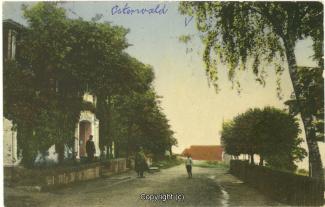 0130A-Osterwald224-Fichtenwirt-1913-Scan-Vorderseite.jpg