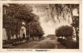 0138A-Osterwald266-Fichtenwirt-1925-Scan-Vorderseite.jpg