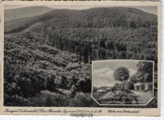 0170A-Osterwald268-Fichtenwirt-1944-Scan-Vorderseite.jpg