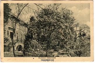 0720A-Osterwald287-Kurhaus-1937-Scan-Vorderseite.jpg