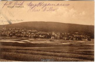 0830A-Osterwald275-Panorama-1911-Scan-Vorderseite.jpg