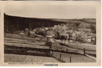 0920A-Osterwald284-Ort-Panorama-Scan-Vorderseite.jpg