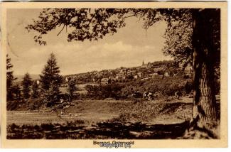 0940A-Osterwald304-Panorama-1923-Scan-Vorderseite.jpg
