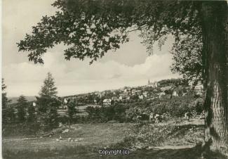 0950A-Osterwald242-Panorama-Scan-Vorderseite.jpg