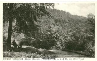 1310A-Osterwald214-Waldweg-Scan-Vorderseite.jpg