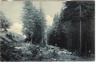 1320A-Osterwald277-Osterwald-1910-Scan-Vorderseite.jpg