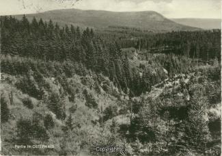 1330A-Osterwald186-Osterwald-Panorama-Scan-Vorderseite.jpg