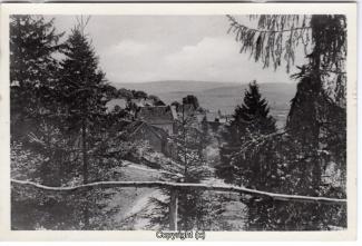 1410A-Osterwald272-Ort-1954-Scan-Vorderseite.jpg