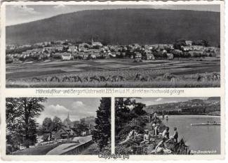 1520A-Osterwald317-Multibilder-Ort-Scan-Vorderseite.jpg