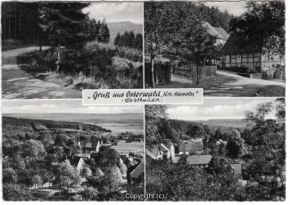 1570A-Osterwald311-Multibilder-Ort-Scan-Vorderseite.jpg