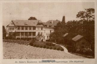 1620A-Coppenbruegge399-Lindenbrunn-1911-Scan-Vorderseite.jpg