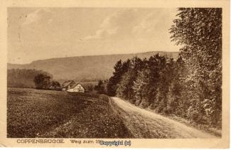 1980A-Coppenbruegge490-Weg-zum-Ith-1926-Scan-Vorderseite.jpg