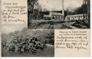 0010A-Nesselberg014-Multibilder-Bergwerk-1906-Scan-Vorderseite.jpg