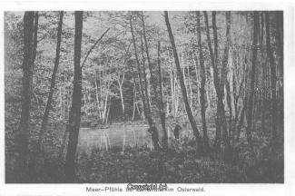 0120A-Sennhuette38-Meerpfuehle-1917-Vorderseite-Scan.jpg