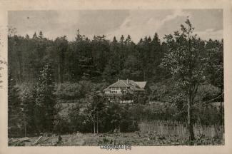 0230A-Sennhuette116-Panorama-1925-Scan-Vorderseite.jpg