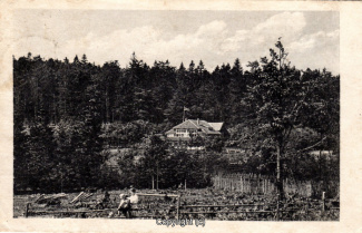0245A-Sennhuette136-Panorama-Scan-Vorderseite.jpg