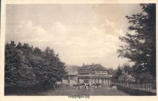 0385A-Sennhuette109-Panorama-mit-Kuehen-1937-Scan-Vorderseite.jpg