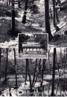 0795A-Sennhuette147-Multibilder-Scan-Vorderseite.jpg