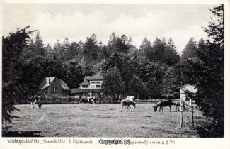 0935A-Sennhuette142-Panorama-Rueckansicht-Scan-Vorderseite.jpg