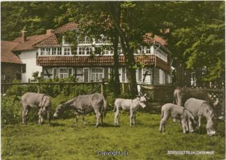 1110A-Sennhuette108-Panorama-mit-Esel-1970-Scan-Vorderseite.jpg