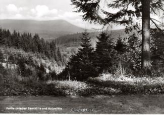 1400A-Sennhuette149-Waldweg-Scan-Vorderseite.jpg
