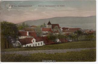 0600A-Salzhemmendorf245-Panorama-1913-Scan-Vorderseite.jpg
