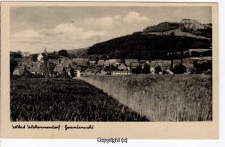 0635A-Salzhemmendorf301-Panorama-Scan-Vorderseite.jpg