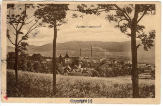 0677A-Salzhemmendorf244-Panorama-1916-Scan-Vorderseite.jpg