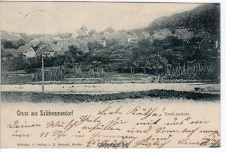 0700A-Salzhemmendorf235-Panorama-1901-Scan-Vorderseite.jpg