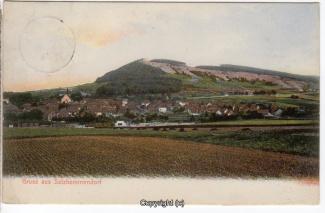 0755A-Salzhemmendorf254-Panorama-1905-Scan-Vorderseite.jpg