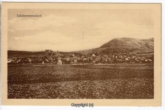 0760A-Salzhemmendorf253-Panorama-Scan-Vorderseite.jpg