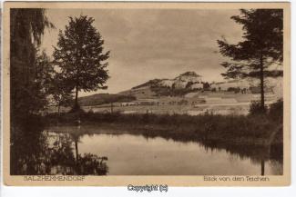 0860A-Salzhemmendorf293-Panorama-1926-Scan-Vorderseite.jpg