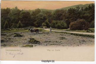 0870A-Salzhemmendorf330-Quelle-1910-Scan-Vorderseite.jpg