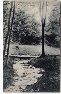 0880A-Salzhemmendorf333-Quelle-1910-Scan-Vorderseite.jpg
