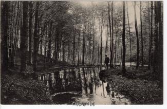 0890A-Salzhemmendorf335-Quelle-Scan-Vorderseite.jpg