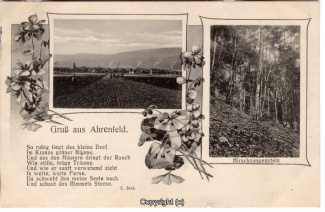 1010A-Ahrenfeld001-Multibilder-1918-Scan-Vorderseite.jpg