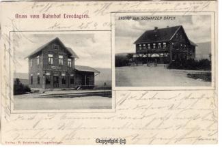 3010A-Levedagsen001-Multibilder-Ort-1904-Scan-Vorderseite.jpg
