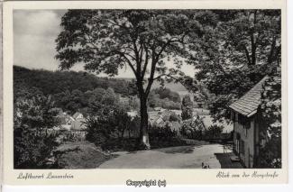0630A-Lauenstein320-Panorama-Bergstrasse-1959-Scan-Vorderseite.jpg