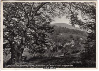 0770A-Lauenstein383-Panorama-Ziegenbuche-1933-Scan-Vorderseite.jpg