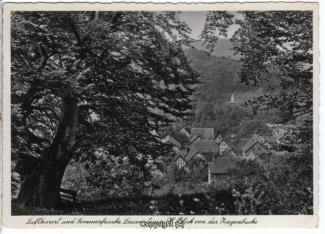 0775A-Lauenstein353-Panorama-Ziegenbuche-Scan-Vorderseite.jpg