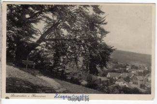 0790A-Lauenstein347-Panorama-Ziegenbuche-1937-Scan-Vorderseite.jpg