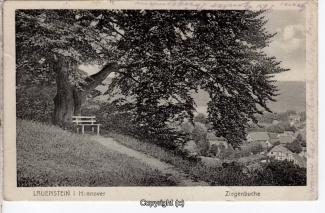 0795A-Lauenstein265-Ziegenbuche-1920-Scan-Vorderseite.jpg
