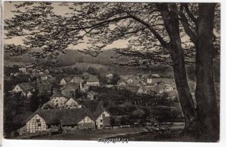 0810A-Lauenstein336-Panorama-Ziegenbuche-Scan-Vorderseite.jpg