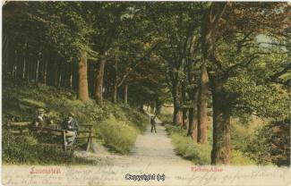 0905A-Lauenstein191-Eichenallee-1905-Scan-Vorderseite.jpg