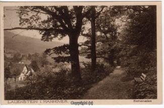 0920A-Lauenstein388-Panorama-Eichenallee-1929-Scan-Vorderseite.jpg