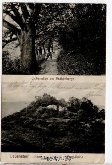 0965A-Lauenstein250-Multibilder-1917-Scan-Vorderseite.jpg